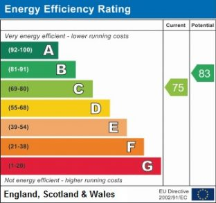 Energy Efficiency Rate